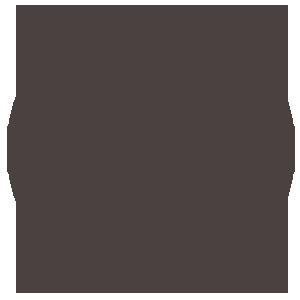 Icon of Presupuestos Municipales