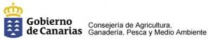 gobierno-de-canarias31