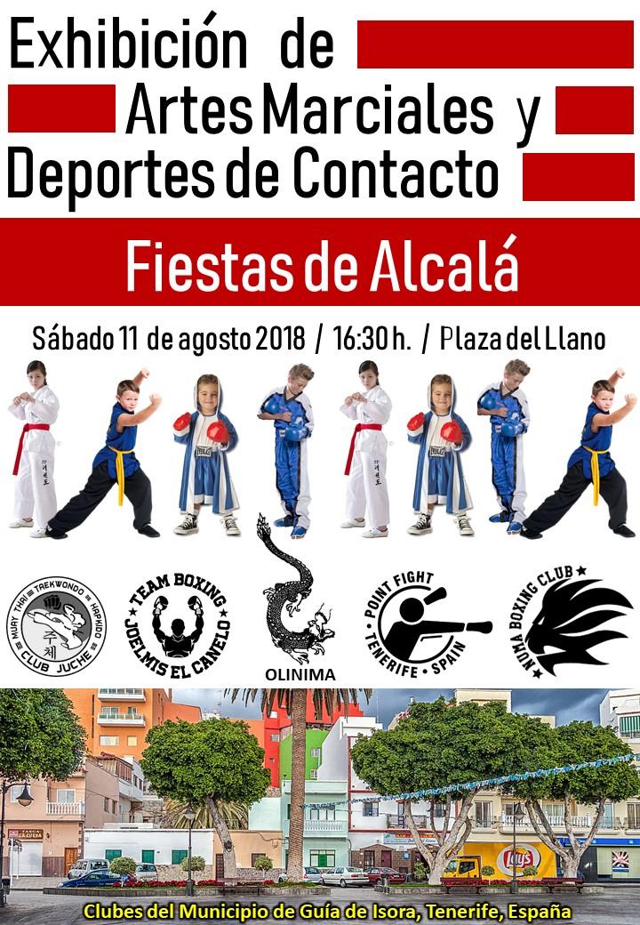 Exhibición clubes municipio Taekwondo_Alcalá